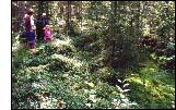 Guidad tur till Moritzgraven med Sonja och Stefan Falkman. Foto: Bia Rask